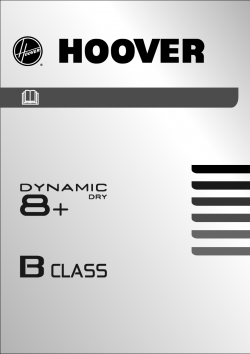Hoover DYC 88132 XB-S